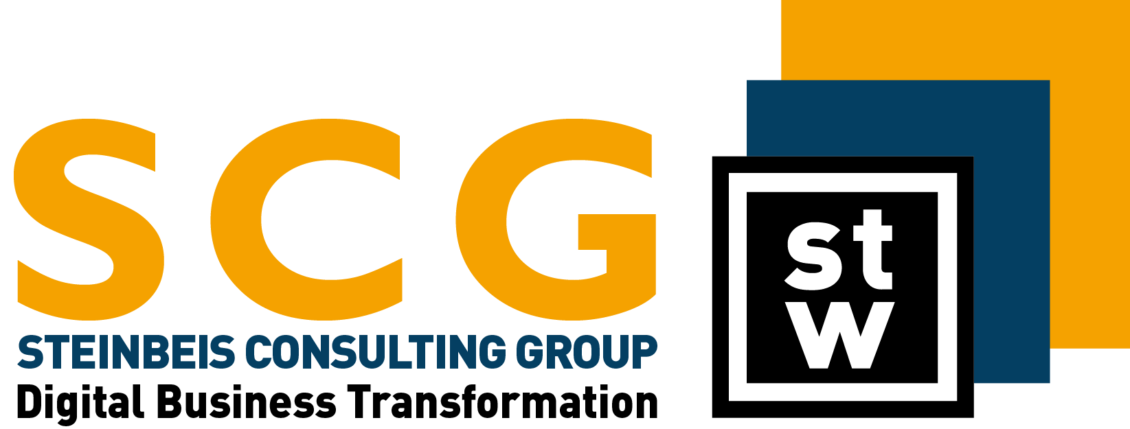 Logo Steinbeis Consulting Group Digital Business Transformation